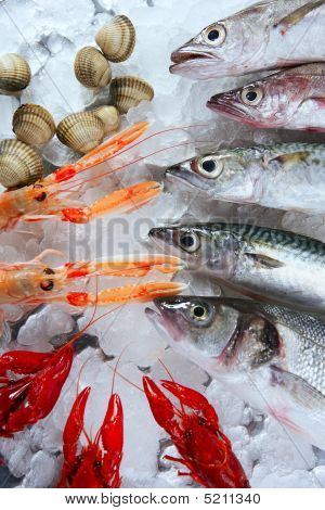 Seafood In Market Over Ice