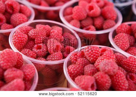 Raspberries gathered