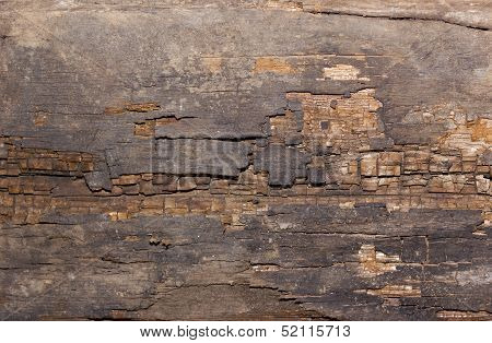 Grunge old wood texture