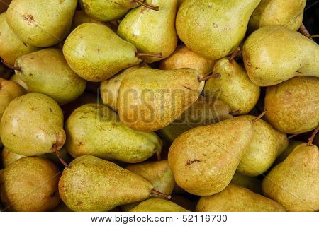 Green ripe pears