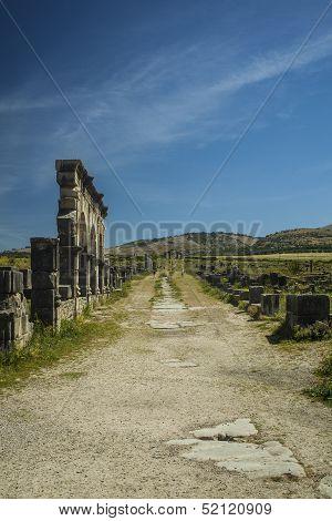 Decamus Maximus
