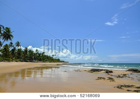 Brazil (taipu De Fora) Beach