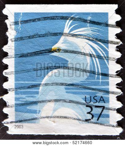 United States Of America - Circa 2003: A Stamp Printed In  Usa Shows Snowy Egret, Egretta Thula