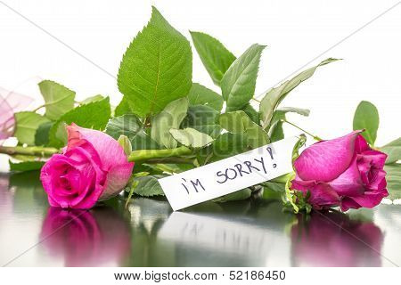Roses With I'm Sorry Message