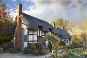 stock photo of english cottage garden  - The old thatched cottage where Anne Hathaway  - JPG