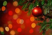 picture of fragile  - Christmas Tree Decoration Christmas tree lit background - JPG