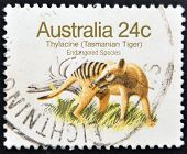 Stamp Shows The Image Of A Thylacine (tasmanian Tiger) with the description