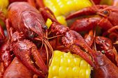 stock photo of creole  - Corn and crayfish. Crayfish Boil. Shallow DOF.