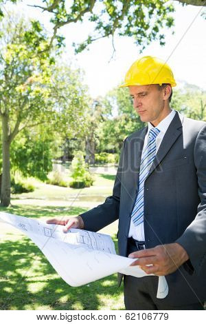 Well dressed businessman reading blueprint in park