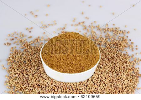 Coriander seed in white bowl on the white background