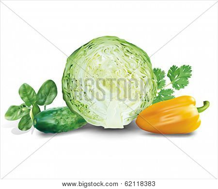 Vegetables and herbs composition. Vector eps 10.
