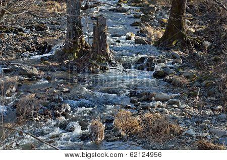 Woodsy Mountain River