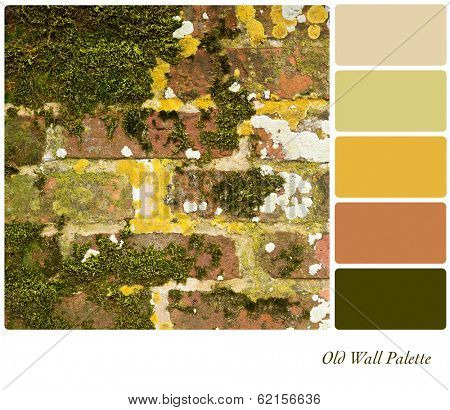 An old brick wall covered in moss and lichen, in a colour palette with complimentary colour swatches