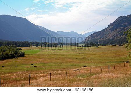 Farmers Field