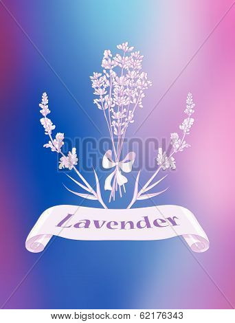 Lavender product label