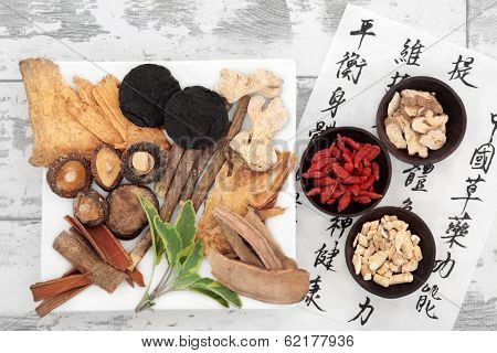 Chinese herbal medicine selection and mandarin calligraphy script on rice paper describing the medicinal functions to maintain body and spirit health and balance body energy.