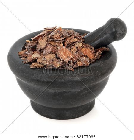 Szechuan lovage root chinese herbal medicine in a black stone mortar with pestle over white background. Chuan xiong.