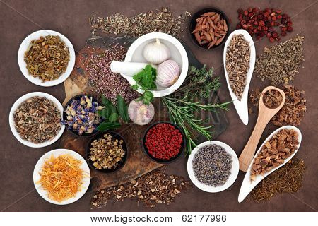 Herbal medicine selection also used in pagan witches magical potions.