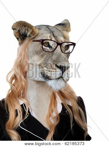 Amusing Lioness Secretary Concept