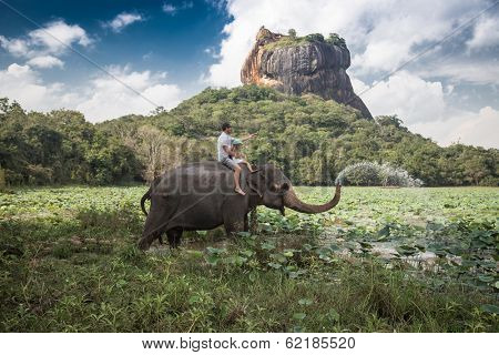 Man and child riding on the back of elephant with rock of Sigiriya as backdrop