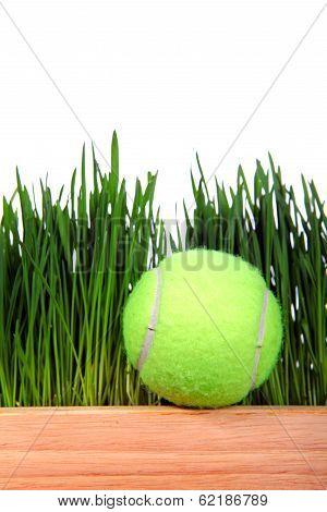 Tennis Ball On Grass Background