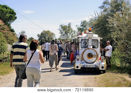 Tourists Leave After Their Visit To The Camargue Horses