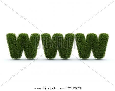 World Wide Web Zeichen aus Gras