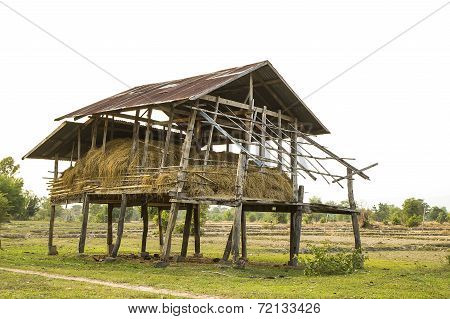 Shack For Storage Of Rice Straw.