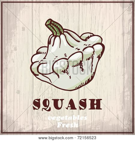 Fresh vegetables sketch background. Vintage hand drawing illustration of a squash