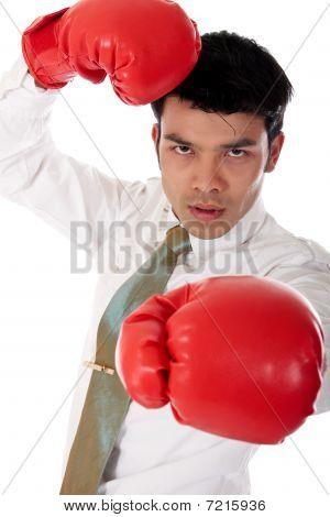Asian Businessman Boxing Gloves