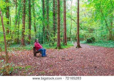 Man Sitting On A Bench In A Forest