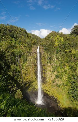 The Akaka Falls, Hawaii