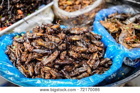 Insects food at Cambodia