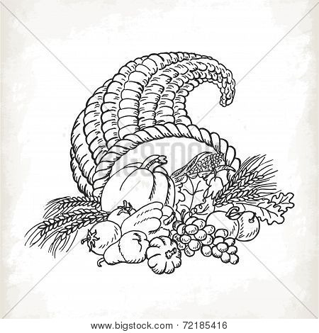 Thanksgiving Cornucopia In Sketch Style. Card Isolated On White Background