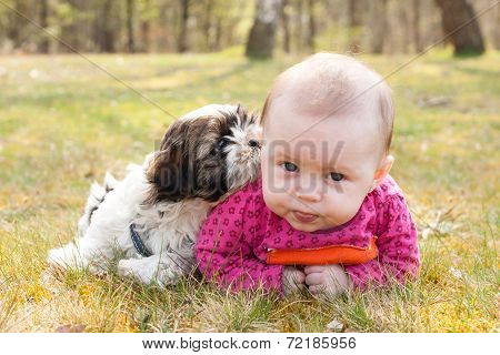 Baby And Puppy On The Grass