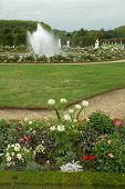 foto of versaille  - Beautiful floral decoration in the castle gardens at Versailles - JPG