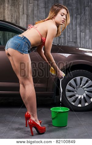 Ready To Wash Your Car.