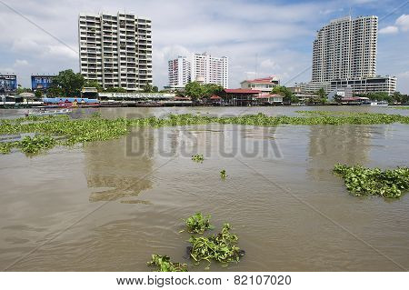 View to the Bangkok city buildings from the Chao Phraya River in Bangkok, Thailand.
