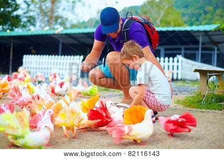 Happy Family Feeding Colorful Pigeon Birds On Farm