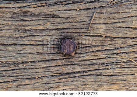 Railway Wood Texture