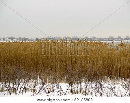 Jamaica Bay, Queens