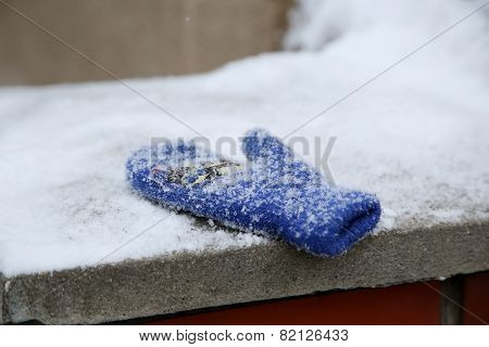 The Forgotten Blue Child Mitten On The Wall At Winter