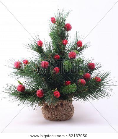 Decorative Fur-tree