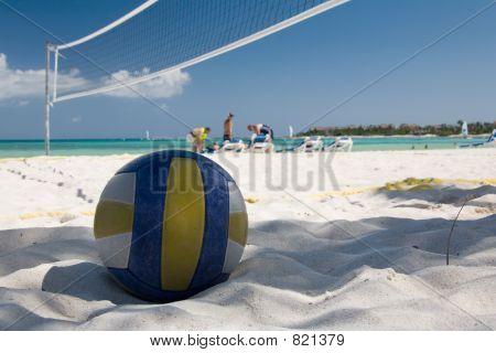 mexico beach ball net