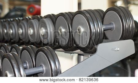 Dumbbells In The Gym