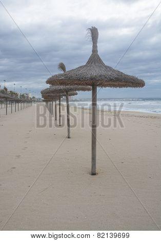 Straw Parasols In A Row On Sandy Beach