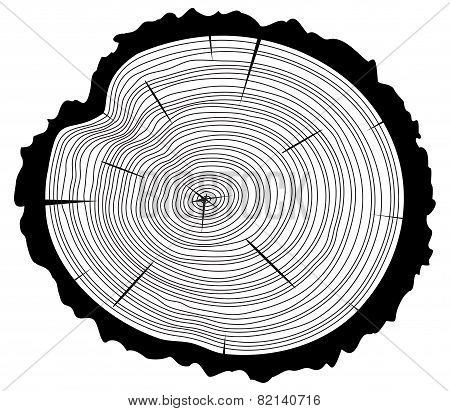 Vector Black And White Wooden Cut Of A Tree Log