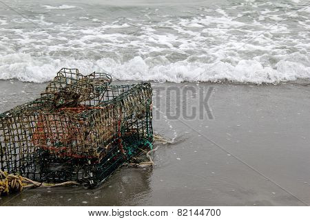 Old lobster trap and netting