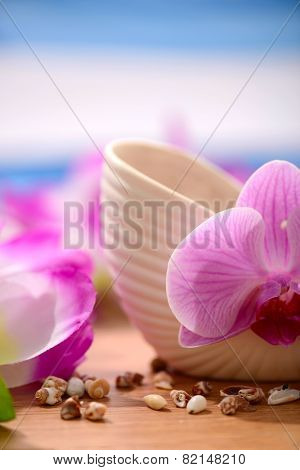 Summer concept composition with the orchid