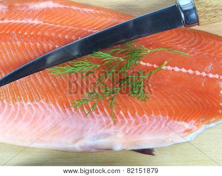 Cut Salmon's Fragment